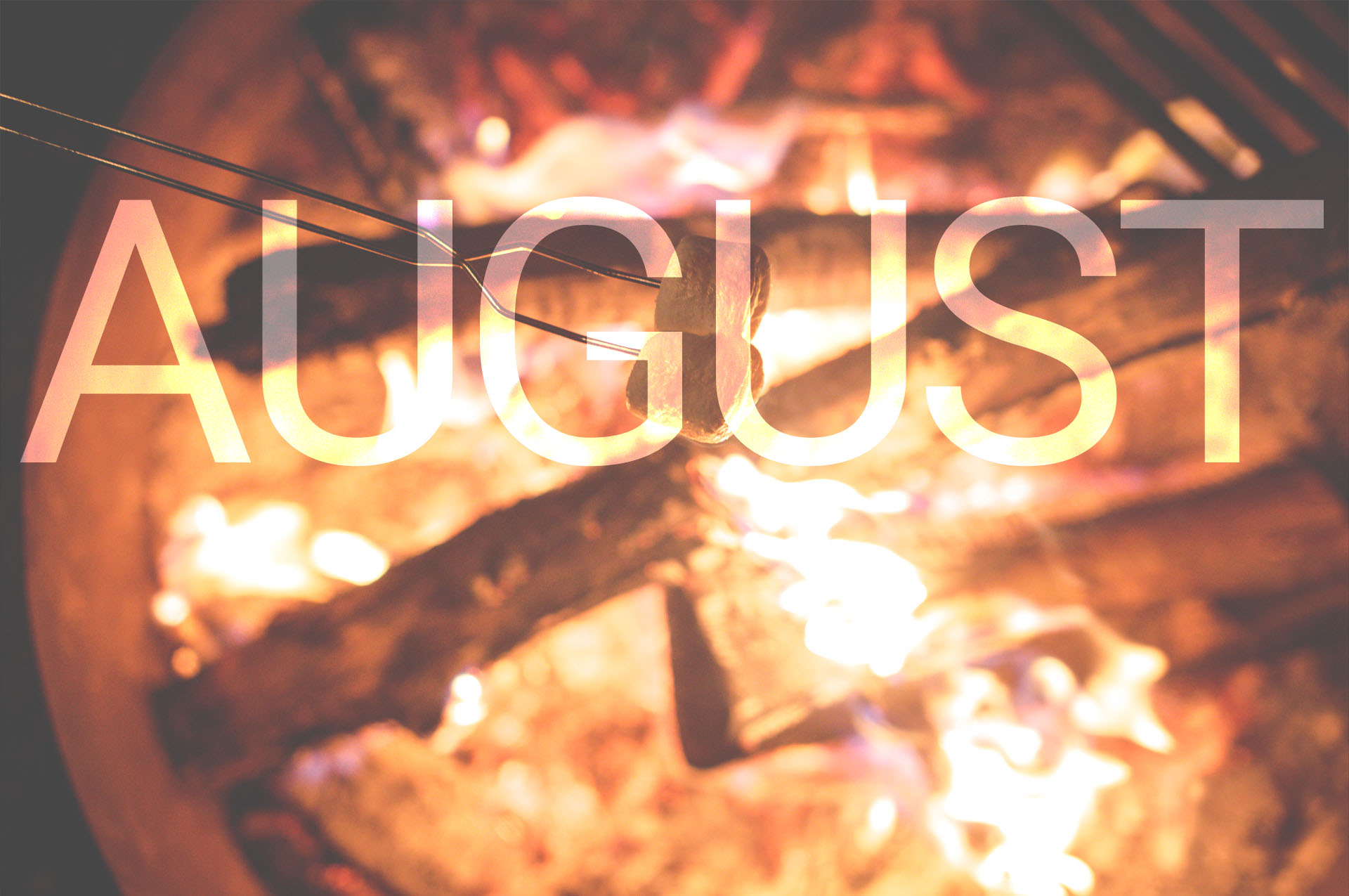 Monthly Blog Roundup – August Edition