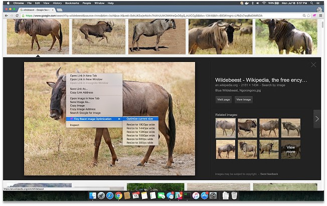 Digital Marketing Chrome Extensions Tinybeest Image Optimization Pagezii Digital Marketing Blog