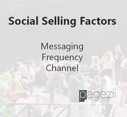 Pagezii Social Selling factors-Pro Interview