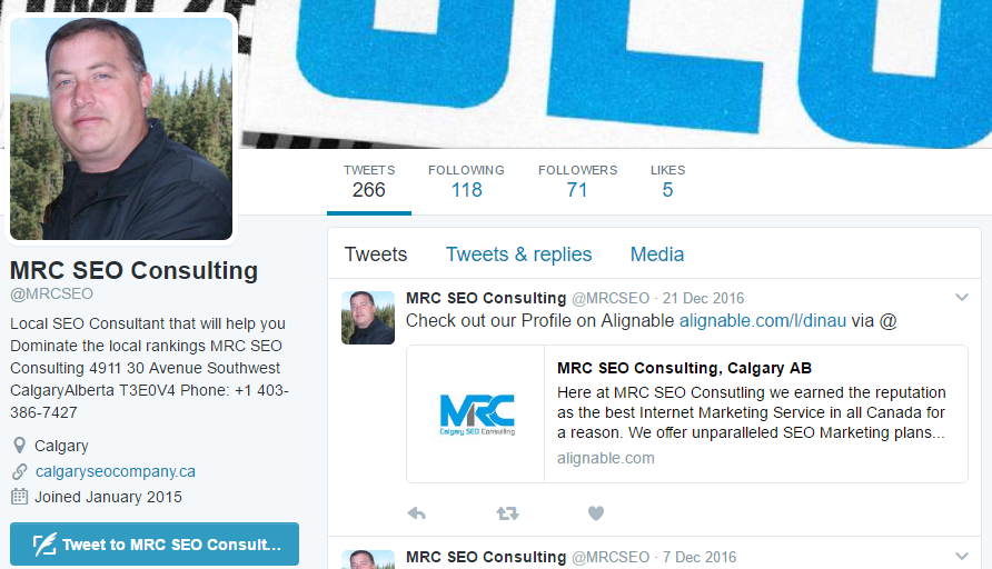 SEO-Consultant-Canada-Pagezii Mike Chrest