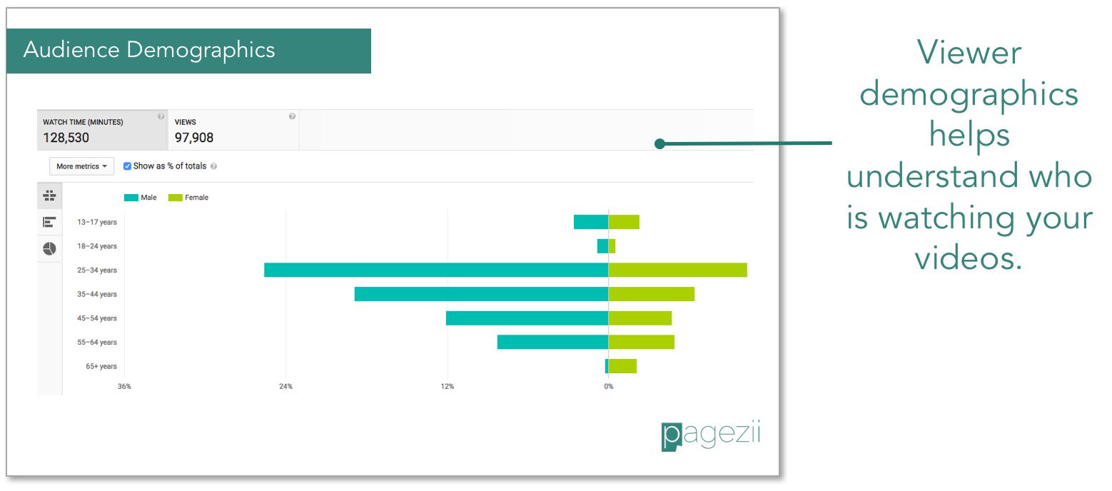 Youtube-Analysis-viewer-audience-demographics
